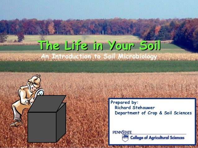 The Life in Your SoilAn Introduction to Soil Microbiology                     Prepared by:                       Richard S...