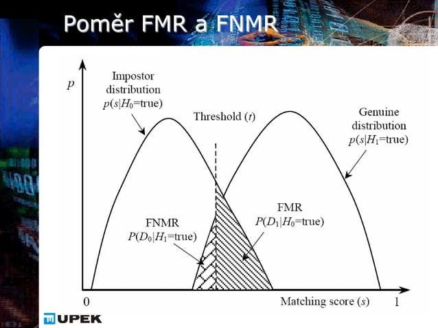 Poměr FMR a FNMR