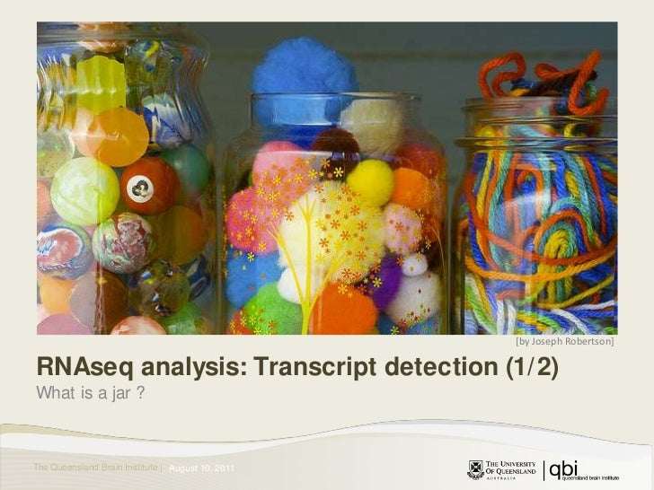 [by Joseph Robertson]<br />RNAseq analysis: Transcript detection (1/2)<br />What is a jar ?<br />August 11, 2011<br />