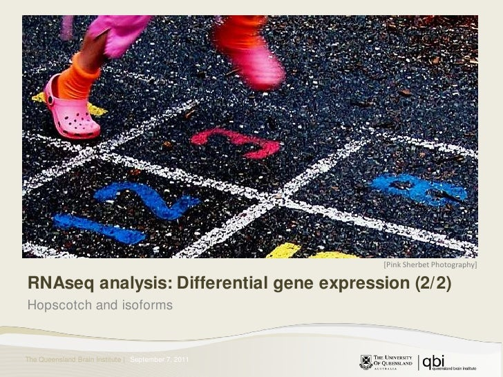 [Pink Sherbet Photography]<br />RNAseq analysis: Differential gene expression (2/2)<br />Hopscotch and isoforms<br />Augus...