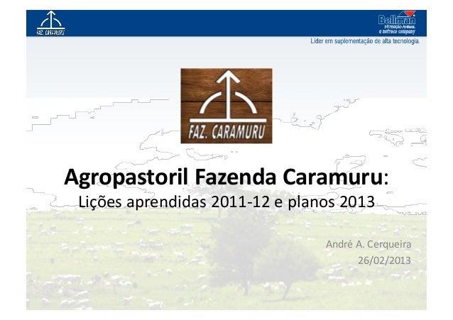 Agropastoril Fazenda Caramuru:  Lições aprendidas 2011-‐12 e planos 2013                               ...