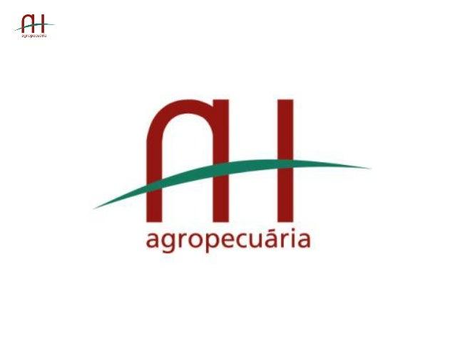 Agropecuária  AH     Data  da  Fundação:  1951   Nome:    Fazenda  Córrego  Azul     Município:...