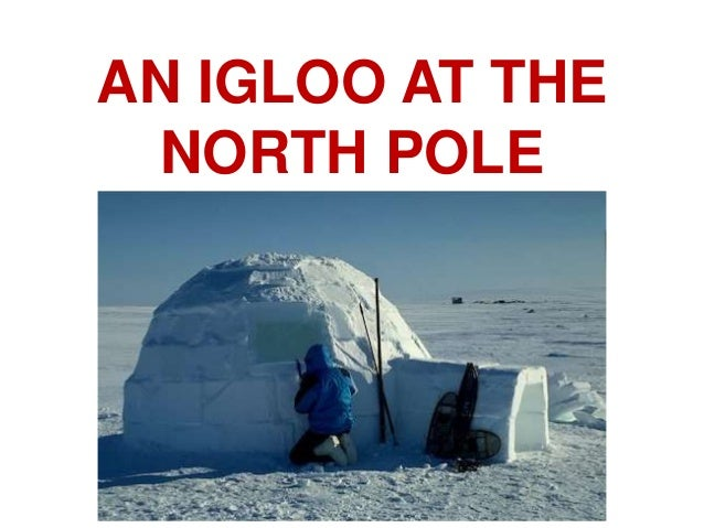 AN IGLOO AT THE NORTH POLE