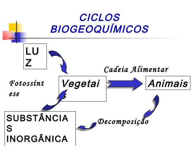 CICLOS BIOGEOQUÍMICOS LU Z Fotossínt ese  Cadeia Alimentar  Vegetai s  SUBSTÂNCIA S INORGÂNICA  Animais  Decomposição