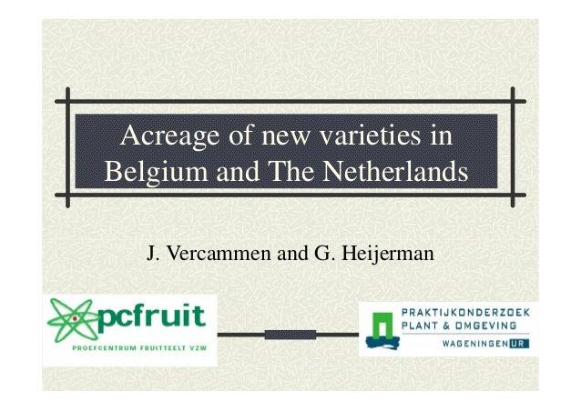 Acreage of new varieties in Belgium and The Netherlands J. Vercammen and G. Heijerman