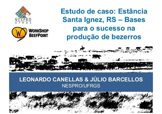 Estudo de caso: EstânciaSanta Ignez, RS – Basespara o sucesso naprodução de bezerrosLEONARDO CANELLAS & JÚLIO BARCELLOSNES...