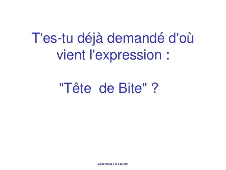 """Tes-tu déjà demandé doù    vient lexpression :    """"Tête de Bite"""" ?          Diaporamas-a-la-con.com"""