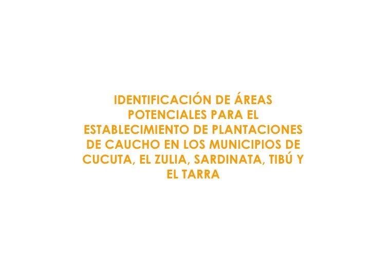 IDENTIFICACIÓN DE ÁREAS POTENCIALES PARA EL ESTABLECIMIENTO DE PLANTACIONES DE CAUCHO EN LOS MUNICIPIOS DE CUCUTA, EL ZULI...