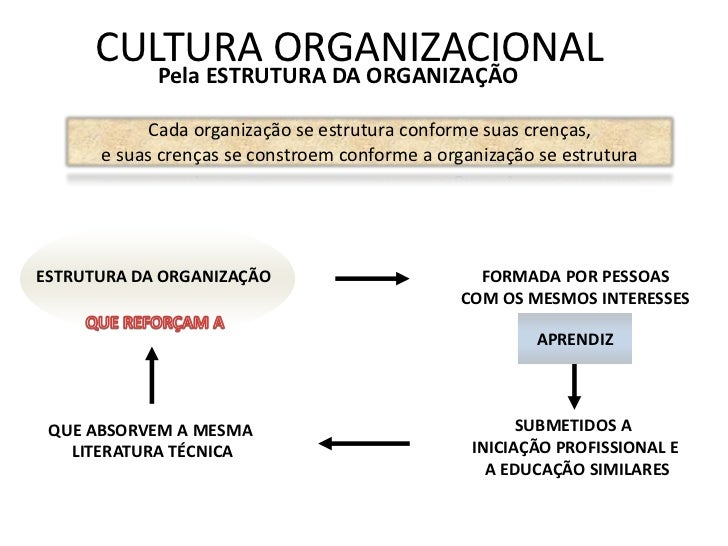 CULTURA ORGANIZACIONAL            Pela ESTRUTURA DA ORGANIZAÇÃO           Cada organização se estrutura conforme suas cren...