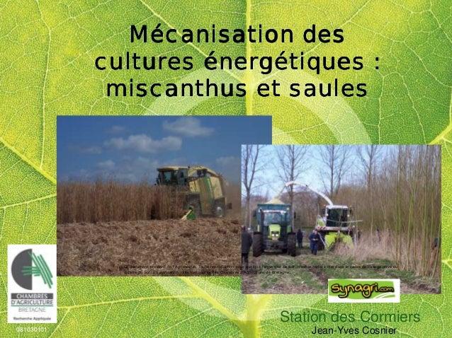Station des Cormiers 081030101 Jean-Yves Cosnier MMMMéééécanisation descanisation descanisation descanisation des cultures...