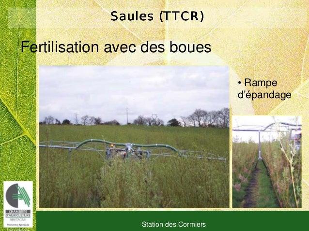 081030101 Station des Cormiers Saules (TTCR)Saules (TTCR)Saules (TTCR)Saules (TTCR) Fertilisation avec des boues • Rampe d...