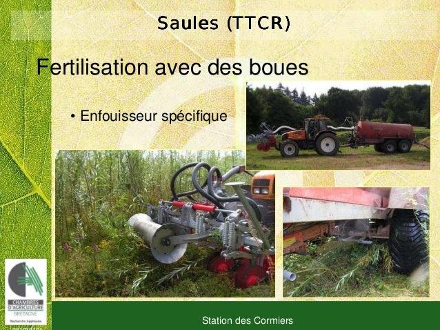 081030101 Station des Cormiers Saules (TTCR)Saules (TTCR)Saules (TTCR)Saules (TTCR) • Enfouisseur spécifique Fertilisation...