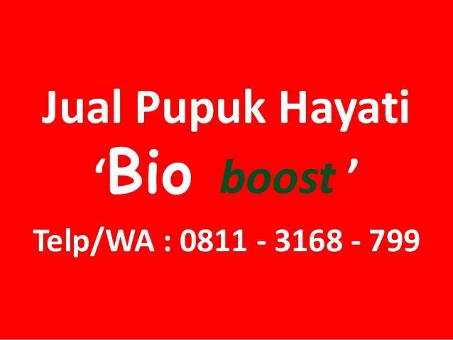Jual Pupuk Hayati 'Bio boost ' Telp/WA : 0811 - 3168 - 799