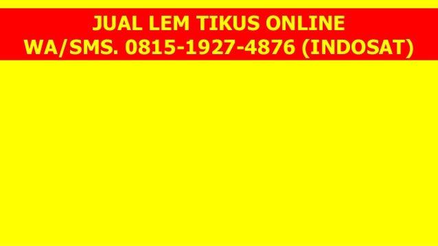 JUAL LEM TIKUS ONLINE WA/SMS. 0815-1927-4876 (INDOSAT)