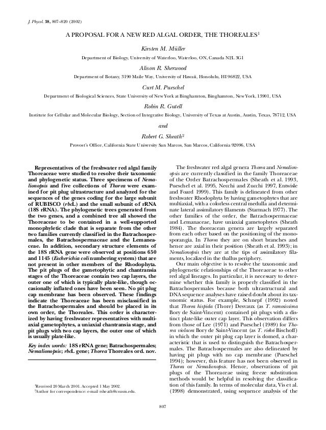 807J. Phycol. 38, 807–820 (2002)A PROPOSAL FOR A NEW RED ALGAL ORDER, THE THOREALES1Kirsten M. MüllerDepartment of Biology...