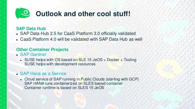 SAP Data Hub e SUSE Container as a Service Platform