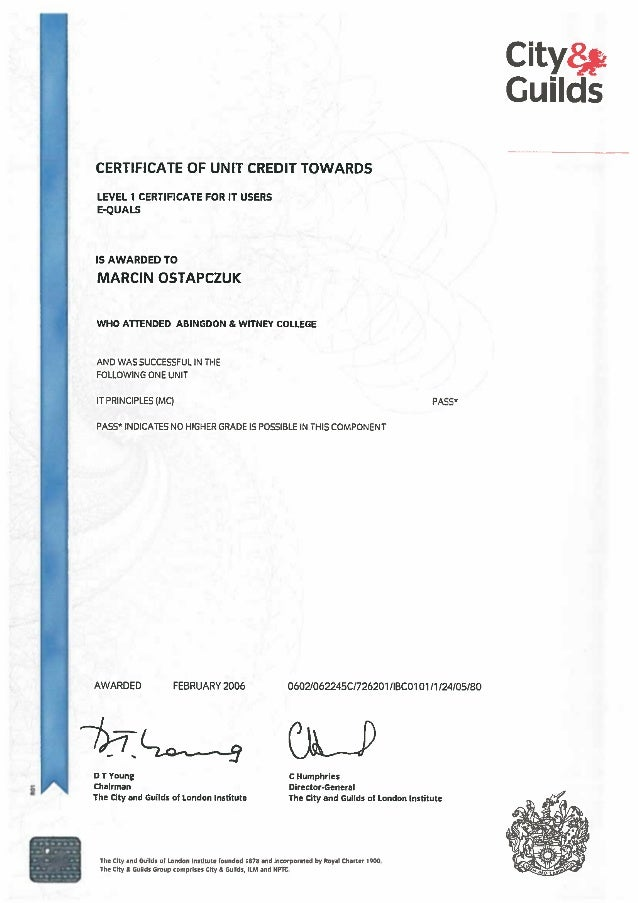 Certificate - City & Guilds - IT PRINCIPLES