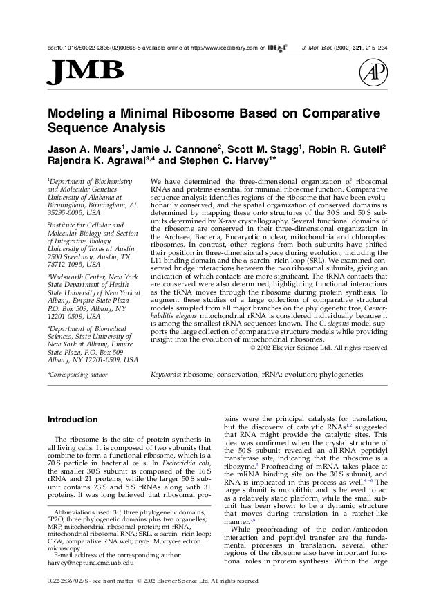 Modeling a Minimal Ribosome Based on ComparativeSequence AnalysisJason A. Mears1, Jamie J. Cannone2, Scott M. Stagg1, Robi...