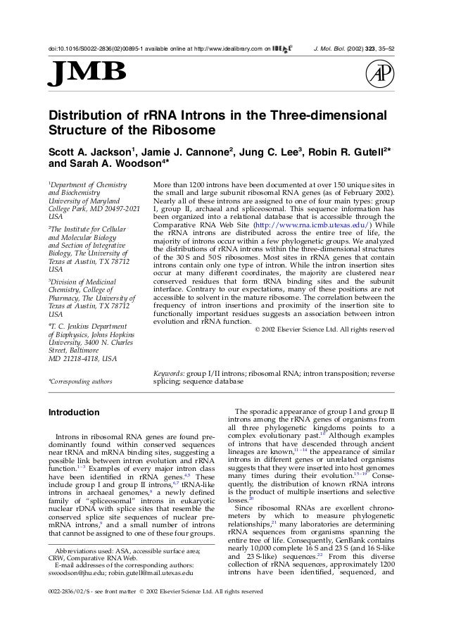 Distribution of rRNA Introns in the Three-dimensionalStructure of the RibosomeScott A. Jackson1, Jamie J. Cannone2, Jung C...