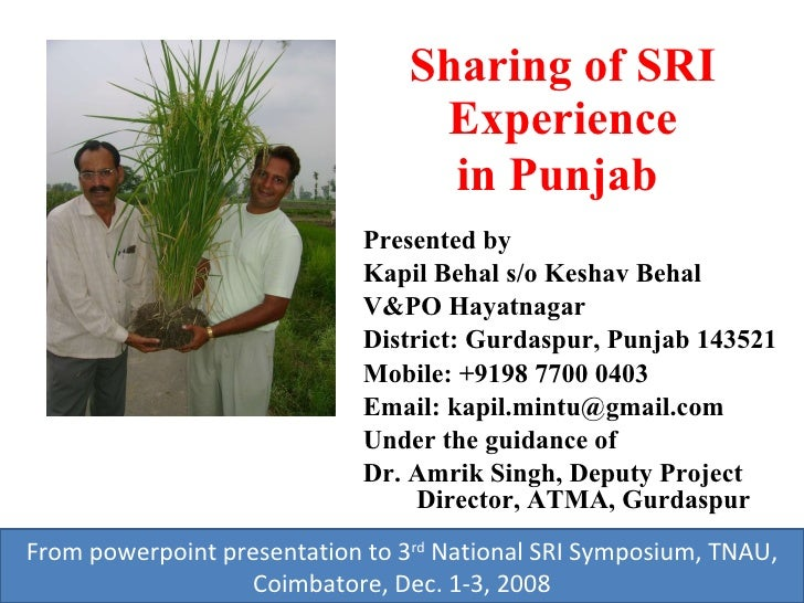 Sharing of SRI Experience in Punjab   <ul><li>Presented by </li></ul><ul><li>Kapil Behal s/o Keshav Behal </li></ul><ul><l...