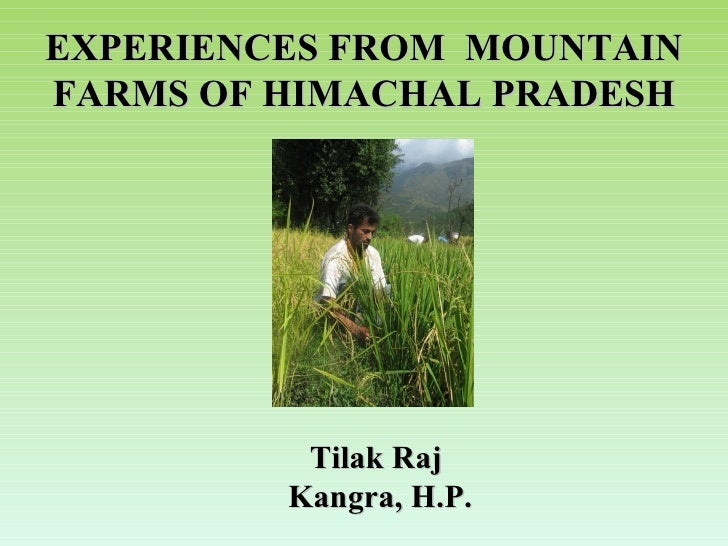 EXPERIENCES FROM  MOUNTAIN FARMS OF HIMACHAL PRADESH Tilak Raj Kangra, H.P.