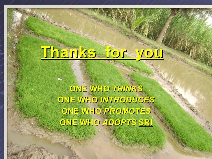 Thanks  for  you   ONE WHO  THINKS ONE WHO  INTRODUCES ONE WHO  PROMOTES ONE WHO  ADOPTS  SRI