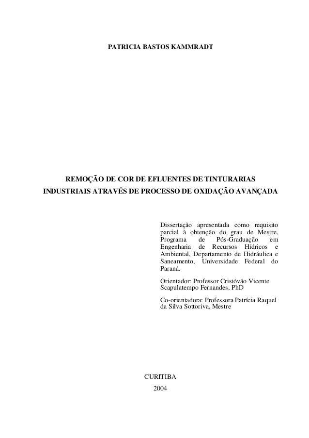 PATRICIA BASTOS KAMMRADT    REMOÇÃO DE COR DE EFLUENTES DE TINTURARIASINDUSTRIAIS ATRAVÉS DE PROCESSO DE OXIDAÇÃO AVANÇADA...