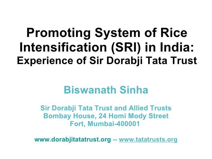 Promoting System of Rice Intensification (SRI) in India:  Experience of Sir Dorabji Tata Trust Biswanath Sinha Sir Dorabji...