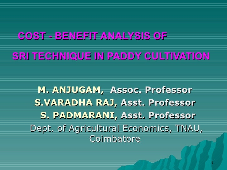COST - BENEFIT ANALYSIS OF  SRI TECHNIQUE IN PADDY CULTIVATION   M. ANJUGAM,   Assoc. Professor  S.VARADHA RAJ,  Asst. Pro...