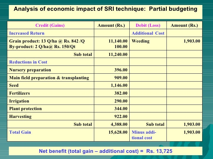 0870 Cost Benefit Analysis Of Sri Technique In Paddy Cultivation