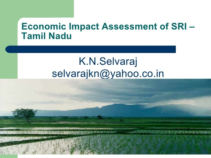 Economic Impact Assessment of SRI – Tamil Nadu <ul><li>K.N.Selvaraj </li></ul><ul><li>[email_address] </li></ul>