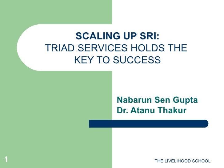 SCALING UP SRI: TRIAD SERVICES HOLDS THE  KEY TO SUCCESS Nabarun Sen Gupta Dr. Atanu Thakur THE LIVELIHOOD SCHOOL