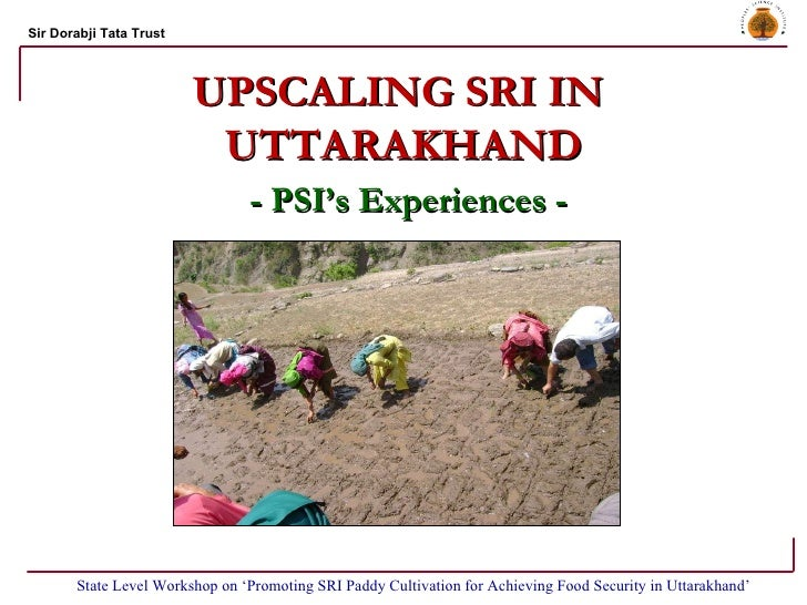 UPSCALING SRI IN  UTTARAKHAND - PSI's Experiences - State Level Workshop on 'Promoting SRI Paddy Cultivation for Achieving...