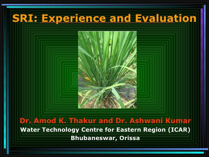 SRI: Experience and Evaluation Dr. Amod K. Thakur and Dr. Ashwani Kumar Water Technology Centre for Eastern Region (ICAR) ...