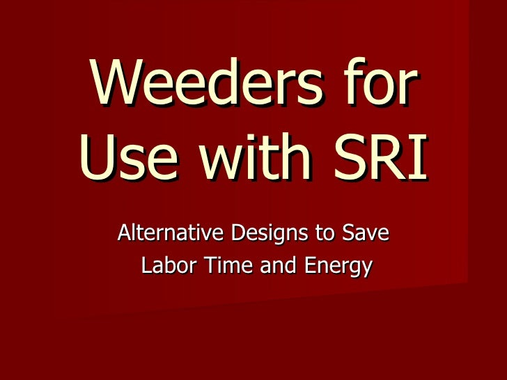 Weeders for Use with SRI Alternative Designs to Save Labor Time and Energy