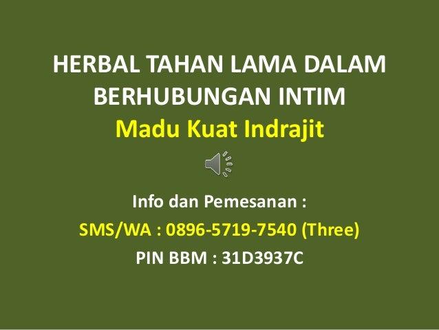 HERBAL TAHAN LAMA DALAM BERHUBUNGAN INTIM Madu Kuat Indrajit Info dan Pemesanan : SMS/WA : 0896-5719-7540 (Three) PIN BBM ...