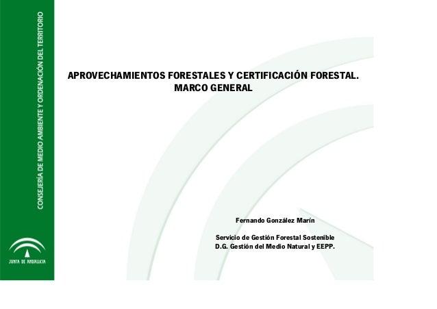 APROVECHAMIENTOS FORESTALES Y CERTIFICACIÓN FORESTAL. MARCO GENERAL Fernando González Marín Servicio de Gestión Forestal S...