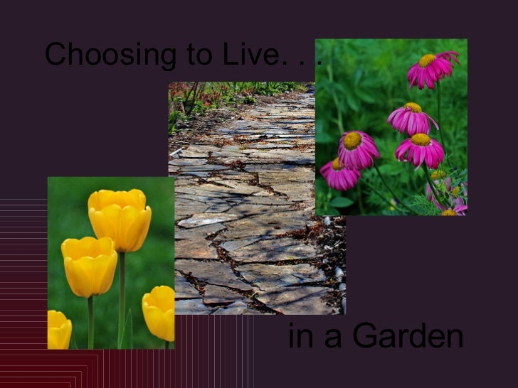 Choosing to Live. . . in a Garden