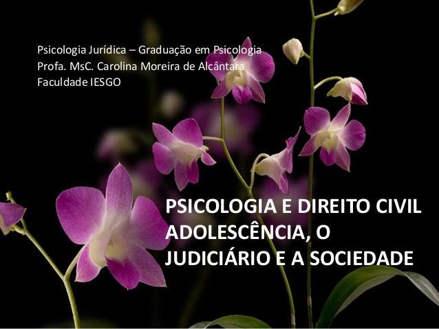 PSICOLOGIA E DIREITO CIVIL ADOLESCÊNCIA, O JUDICIÁRIO E A SOCIEDADE Psicologia Jurídica – Graduação em Psicologia Profa. M...