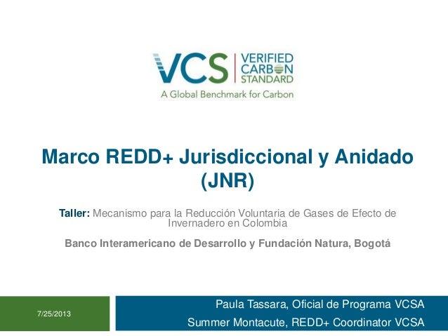 Marco REDD+ Jurisdiccional y Anidado (JNR) Paula Tassara, Oficial de Programa VCSA Summer Montacute, REDD+ Coordinator VCS...