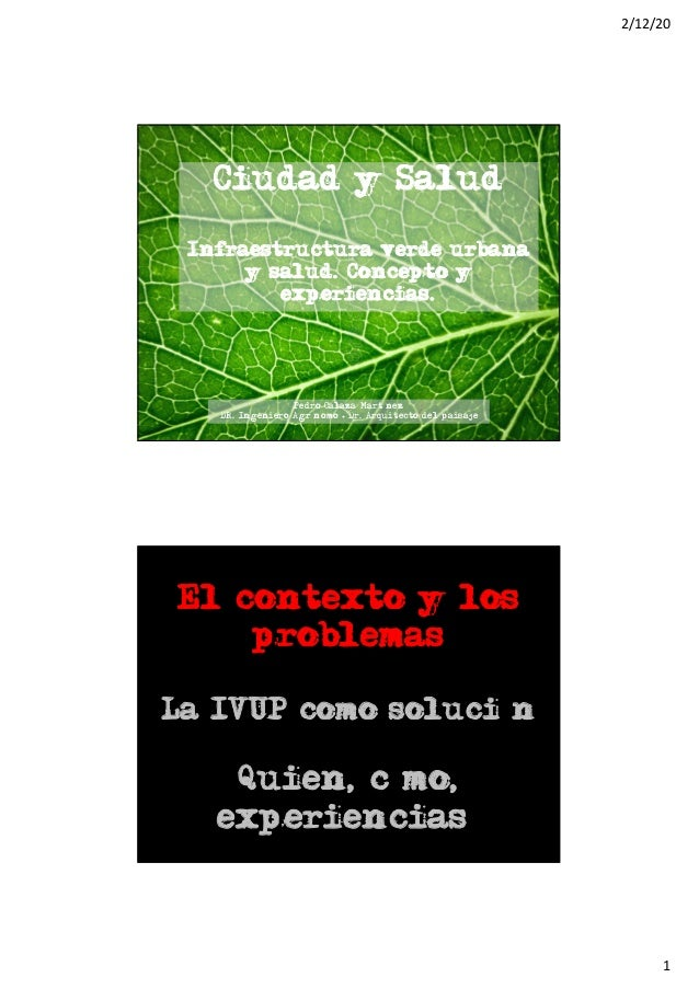 2/12/20 1 Ciudad y Salud Infraestructura verde urbana y salud. Concepto y experiencias. Pedro Calaza Martínez DR. Ingenier...