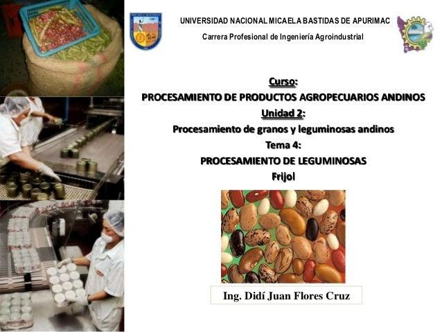 UNIVERSIDAD NACIONAL MICAELA BASTIDAS DE APURIMAC           Carrera Profesional de Ingeniería Agroindustrial              ...