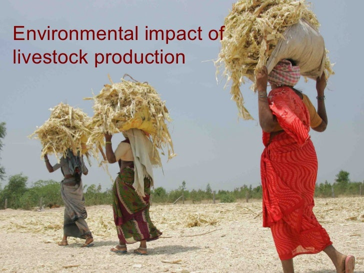 Environmental impact of livestock production