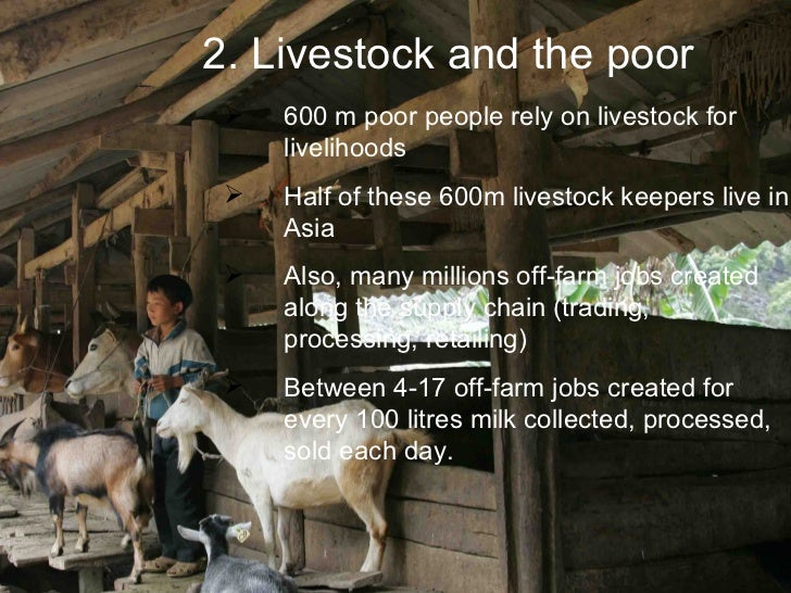 2. Livestock and the poor     600 m poor people rely on livestock for      livelihoods     Half of these 600m livestock ...