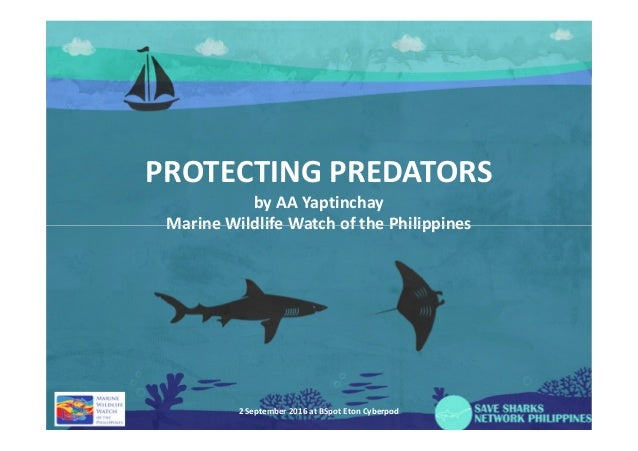 PROTECTING PREDATORS by AA Yaptinchay Marine Wildlife Watch of the PhilippinesMarine Wildlife Watch of the Philippines 2 S...