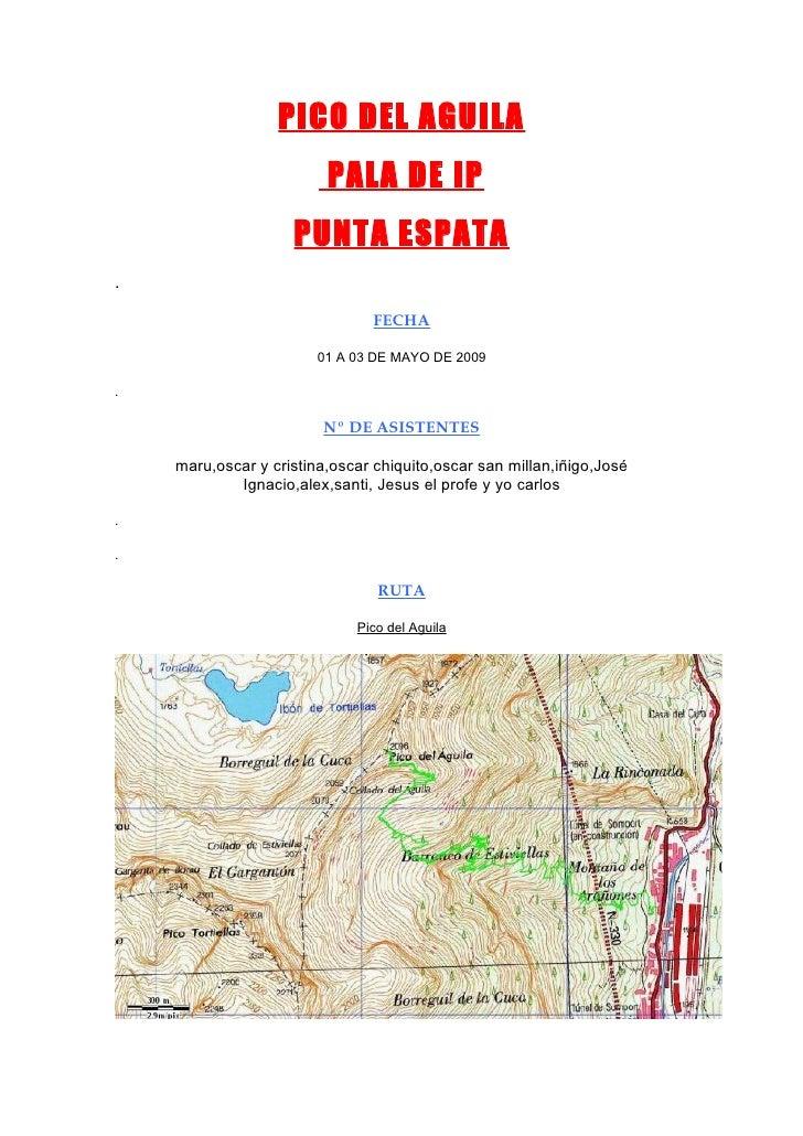 PICO DEL AGUILA                          PALA DE IP                     PUNTA ESPATA .                                  FE...