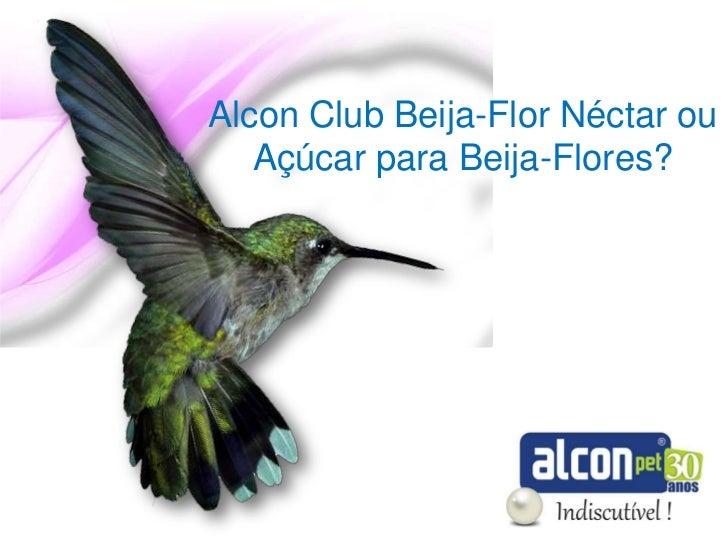 Alcon Club Beija-Flor Néctar ou   Açúcar para Beija-Flores?