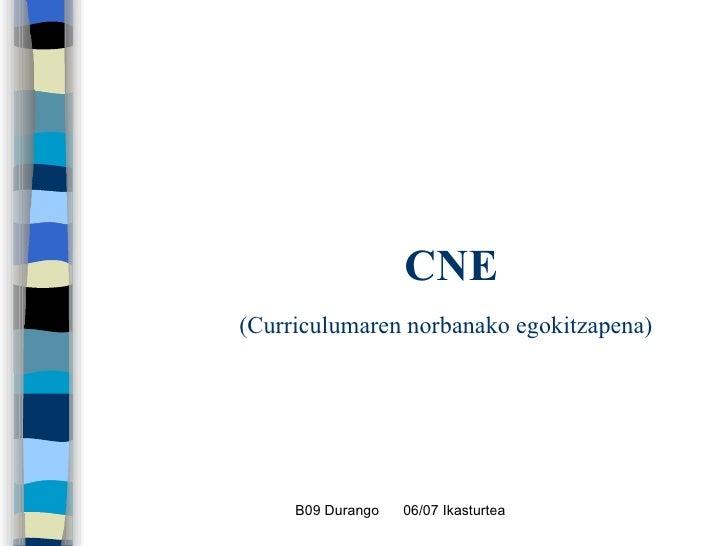 CNE   (Curriculumaren norbanako egokitzapena)