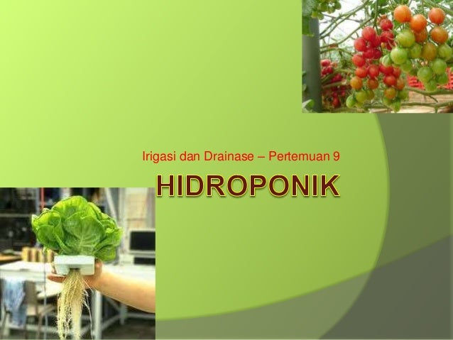 09 Hidroponik