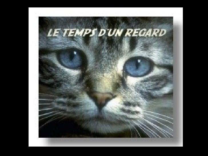 D'autres sur: Diaporamas-a-la-con.com         Le site des meilleurs diaporamas humoristiques   [Attention le passage du po...